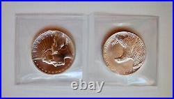 2019 P 2.5 oz x 2 American Liberty Silver Medals 2 items 5 oz total spotted