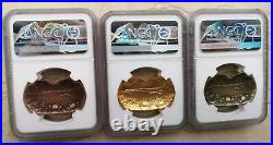 NGC MS70 China 40x23mm Medals Set (5 pcs, complete set) Chinese Mitten Crab